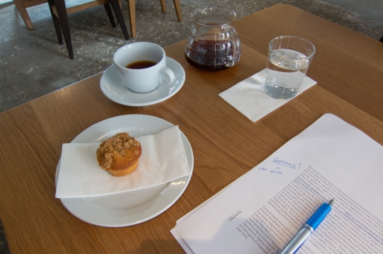 Hurried writing at one of Copenhagen's nicer cafes the morning of the Mindlab session