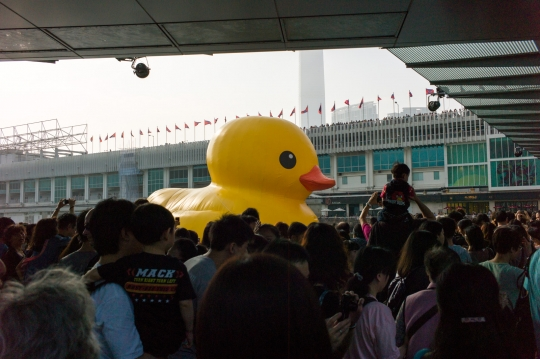 "Hong Kong is currently in love with <a href=""http://online.wsj.com/article/SB10001424127887323716304578482032215544650.html"">a giant rubber ducky</a>."